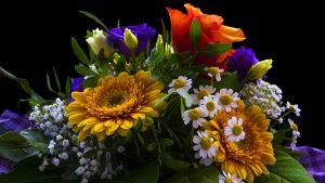 פרחים מיוחדים