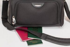דרכונים ותיק מנהלים